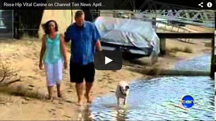 Channel Ten News – Video